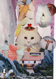 collage for Pixie and Rotter Zine. http://pixieandrotter.com/ by amanda. m. jansson., via Flickr