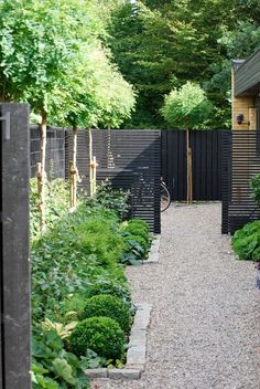 Charcoal grey wood panel fence creates a toned down backdrop for the greenery in the garden.