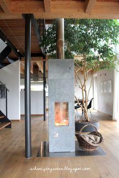 Ficus+Benjamini+Birkenfeige+Zimmerpflanze+gross+XXL+Baum+Haus++Holzhaus+Ein+Schweizer+Garten+Blog+%286%29.JPG 427×640 Pixel