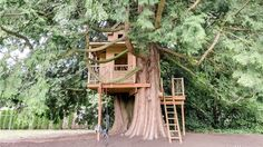 For someone with kids, neither the expansive 2011 custom house nor the barn that looks much older will be as memorable as the two-story treehouse