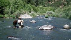 fishing with dog www.jsrods.com