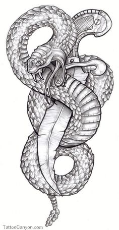 Afbeeldingsresultaat voor Snake and dagger tattoo design