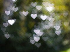 DIY - Create Your Own Bokeh;  heart shaped bokeh