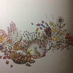 Johanna Basford | Picture by Paula | Colouring Gallery