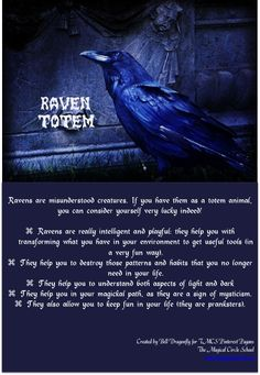 Raven Totem. Totem and Spirit Animals. Pin created by Bell Dragonfly for The Magical Circle School Class Pinterest Pagans. www.themagicalcircle.net