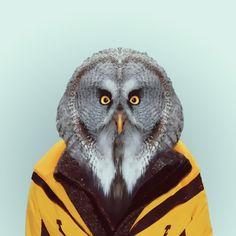 Zoo Portraits / Yago Partal | Photographie