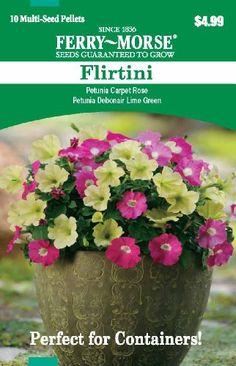 Ferry Morse 2179 Conatiner Combinations, Petunia-Flirtini - http://yourflowers.us/ferry-morse-2179-conatiner-combinations-petunia-flirtini-2/