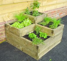 kehole raised beds - Bing Images