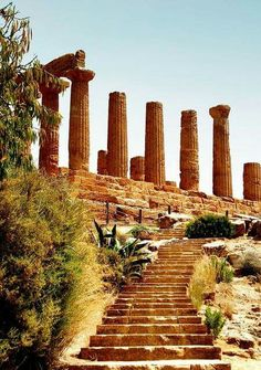 Agrigento. Sicily. (Valley of the Temples).