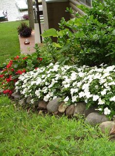 An all-white impatiens border really stands out in the early evening.