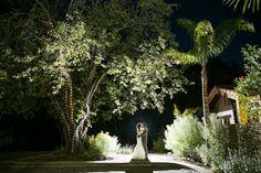 Santa Cruz Wedding Photographer – Kennolyn Hilltop Hacienda: Tracy and Perry