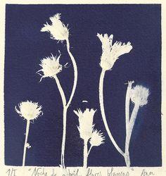 Mini Print Internacional de Cadaqués | L'EXPOSICIÓ Mini, Bobby Pins, Dandelion, Hair Accessories, Flowers, Beauty, Printmaking, Colors, Art