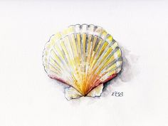 """Seashell Painting 2 - Print from Original Watercolor Painting, """"Sea Scallop"""", Home Decor"""