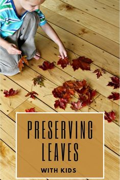 Learn how to easily preserve leaves with your kids! Then use them in a variety of fall activities - the possibilities are endless! Fall Activities For Toddlers, Creative Activities For Kids, Kids Learning Activities, Autumn Activities, Preschool Activities, New Crafts, Arts And Crafts Projects, Cute Crafts, Nature Table
