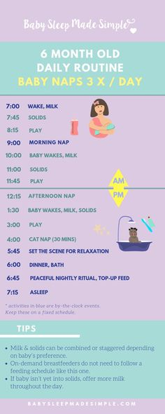 Sleep training tips for your 6 month old baby - sleep training at the age of . - Sleep training tips for your 6 month old baby – sleep training at the age of 6 months (gentle and - 6 Month Old Schedule, Baby Food Schedule, Baby Feeding Schedule, Baby Sleep Schedule, Newborn Schedule, 6 Month Sleep Regression, Baby Schlafplan, Baby Monat Für Monat, 6 Month Old Baby