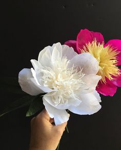 The book will have hella peonies that's all I can say.  #paperflowers