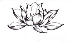 Black Lotus Tattoo, i want this on my arm. Black Lotus Tattoo, Lotus Tattoo Design, Realistic Lotus Tattoo, Simple Lotus Flower Tattoo, Realistic Sketch, Lotus Design, Trendy Tattoos, Love Tattoos, Beautiful Tattoos