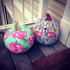 Lilly pumpkins!!  Why couldnt our pumpkins look like this