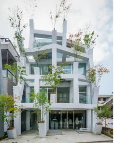 Tree modern house #archite_design #architecture  #building  #architexture #city #buildings #house #urban #design #minimal #interior #town #street #art #life #travel #modern #luxury #instagood #beautiful #brand #architectureporn #lookingup #style #nature #composition #geometry #home #white #tree