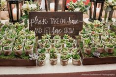 Jenny + Adam gifted each guest with a potted succulent! What a unique wedding favor! Succulent wedding favors for guests.Jenny + Adam Mallard Island Yacht Club Manahawkin, New Jersey 24 x 30 in.Succulent Favors :: Mallard Island Yacht Club :: Sign by Kyle Creative Wedding Favors, Inexpensive Wedding Favors, Cheap Favors, Rustic Wedding Favors, Wedding Favors For Guests, Personalized Wedding Favors, Unique Wedding Favors, Unique Weddings, Gift Wedding