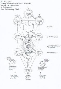 """Platonic Solids on the Tree of Life"" by Jane Adams. Occult Symbols, Occult Art, Sacred Symbols, Tarot, Rose Croix, Sacred Geometry Art, Geometry Tattoo, Platonic Solid, Esoteric Art"