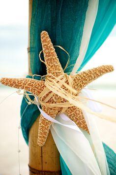 Beautiful sugar starfish tie back for altar - beach wedding idea.