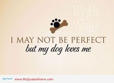 dog lovers quotes   My dog love, and I love my dog
