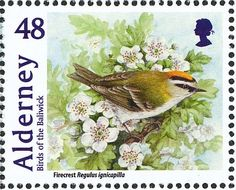 Common Firecrest stamps - mainly images - gallery format