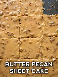 The BEST butter pecan sheet cake recipe - can't wait to bake this one up again! Sheet Cake Pan, Sheet Cake Recipes, Sheet Cakes, Recipe Sheet, Weight Watcher Desserts, Nutella Brownies, Köstliche Desserts, Dessert Recipes, Frosting Recipes