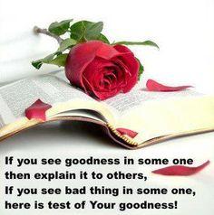 Quotations - goodness