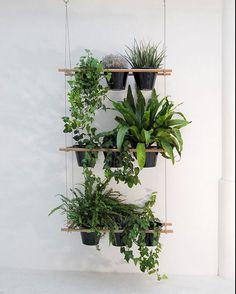 Living Small: A Hanging Window Box Planter