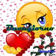 Buongiorno gif Good Morning Love, Make Me Smile, Diy And Crafts, Animation, Creative, Gifts, Genere, Stella, Box