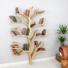 The Elm Tree bookcase - Elm Tree bookshelf our new tree shelf from BespOakInteriors -