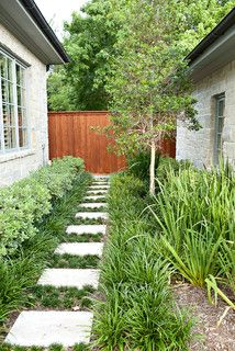 Traditional with a Twist - transitional - landscape - dallas - by Southern Botanical, Inc.