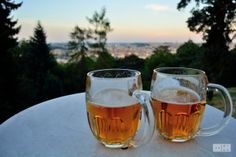Pilsner on the Petrin Hill
