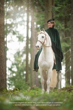Ein weisses Einhorn steht im Wald | Pferd | Bilder | Foto ...