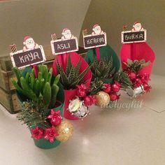Christmas Plants, Christmas Hacks, Christmas Art, Christmas Gifts, Christmas Ornaments, Succulent Planter Diy, Succulent Gifts, Planting Succulents, Flower Decorations