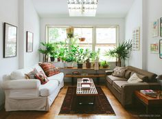 02-decoracao-sala-estar-plantas-boho