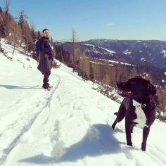 Un'altra fantastica giornata un'altra fantastica escursione! #falchettolovers #falchettorelax #winter #neve #snow #trentinodavivere #trekkingintothesnow #falchetto #valdinona4zampe @visittrentino @valdinon #sky #relax #whisky
