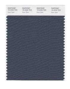 Pantone Smart Swatch 19-4220 Dark Slate