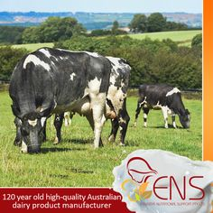 Fresh local ingredients and are blended with the knowledge and expertise of a 120 year old high-quality Australian dairy product manufacturer.  For more information visit our website at http://www.ens.global or contact our customer service for more information through email at info@ens.global.  #ens #milk #ensmedi #essentialnutritionalsupport