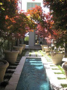 Alys Beach cock-tail pool - modern - landscape - other metro - Troy Rhone Garden…