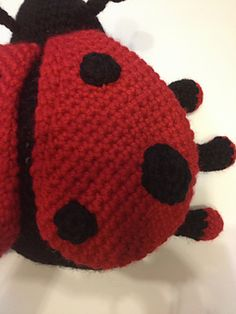 This is a very, very big ladybug or ladybird as you prefer to name it!