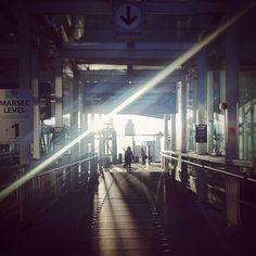 Hiroaki Fukuda @hirozzzz Instagram photos   Websta