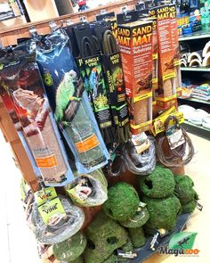 Your reptile babies will love to be treated to new accessories for their home! 🤗 Shop online or in store. Remember that you can order online or by phone for an easy pickup in store! ❤ #MagazooReptiles Reptile Shop, Paludarium, Witch Shop, Reptile Accessories, Arya, House In The Woods, Reptiles, Terrarium, Babies