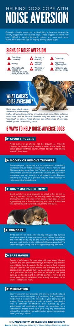 "If your dog suffers and gets anxious around loud noise like fireworks and thunderstorms, this infographic can offer some helpful tips! ""Helping Dogs with Noise Aversion"""