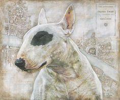 Bullseye - Limited Edition Bull Terrier Art Print - Tom Buckley - tombuckleydogportraits.co.uk
