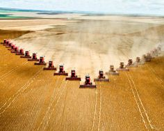 Amazing Picture..24 Combines Harvesting Crop At Same Time...Cool!