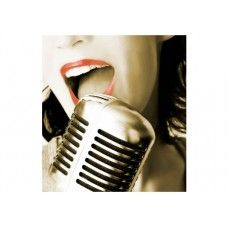 Voice, not mic!