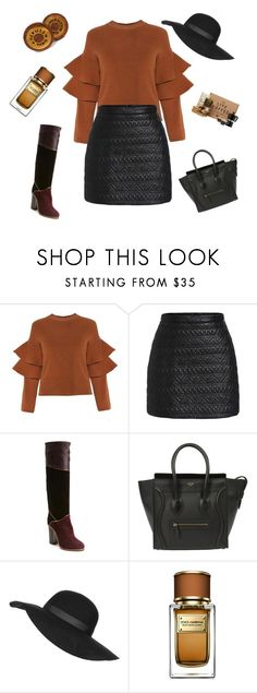 """""""30 years old"""" by violavelvet ❤ liked on Polyvore featuring Lanvin, CÉLINE, Topshop, Dolce&Gabbana, Hermès, vintage, women's clothing, women's fashion, women and female"""